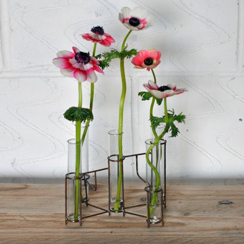 Test tube vase home barn vintage for Test tube flower vase rack