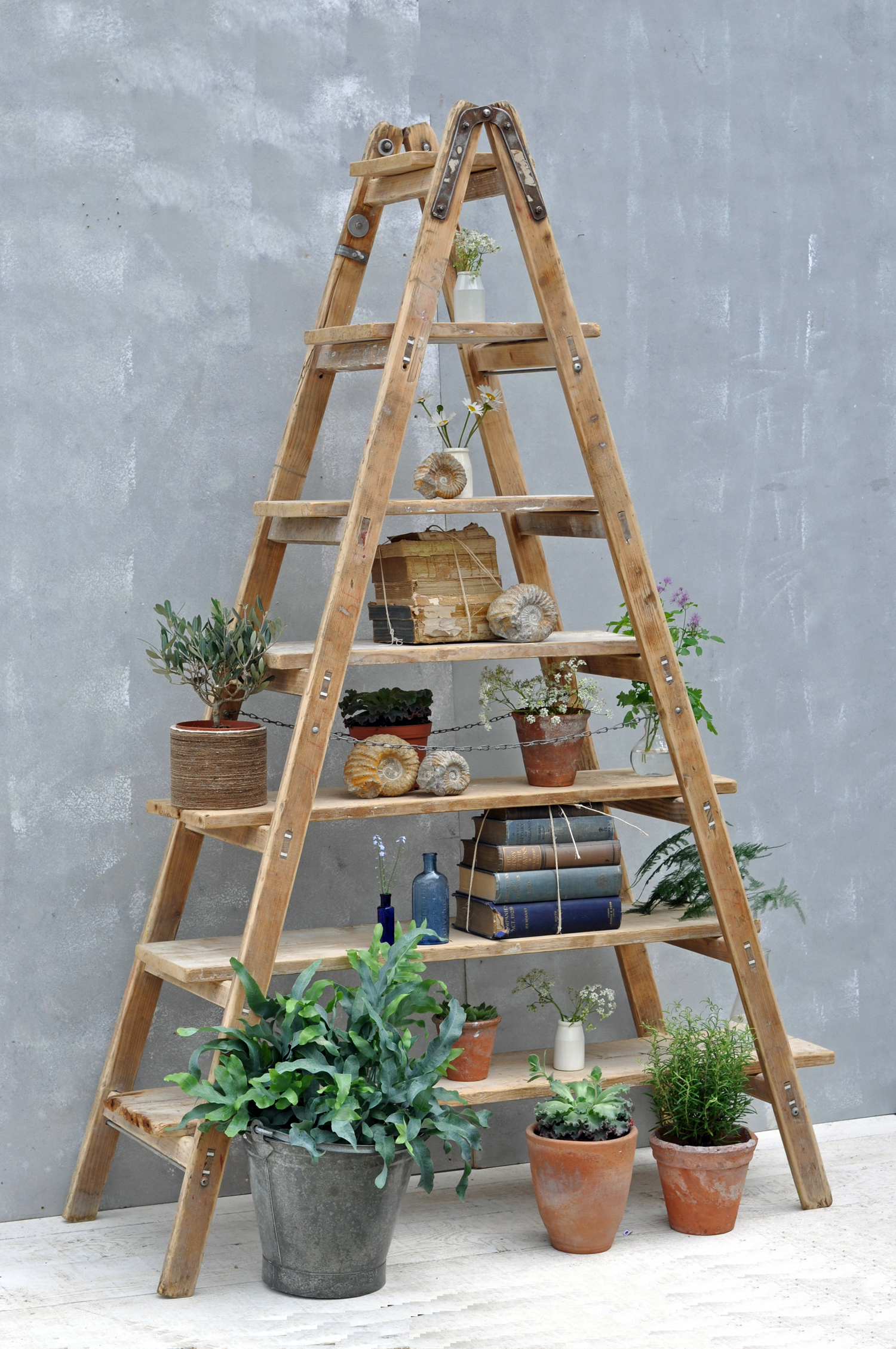 Vintage reclaimed ladder shelves rustic shelving for Decor ladder