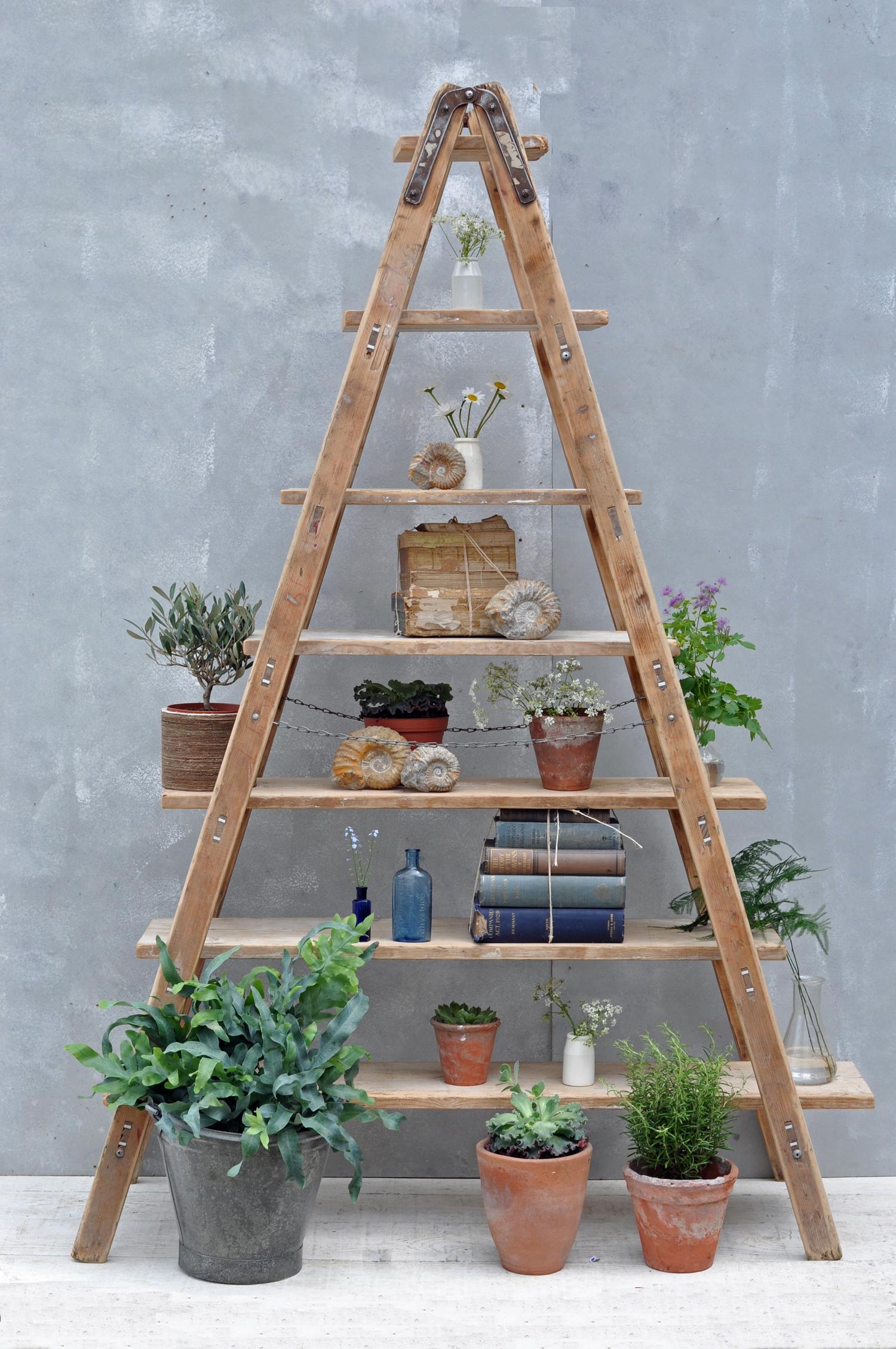 vintage reclaimed ladder shelves rustic shelving. Black Bedroom Furniture Sets. Home Design Ideas
