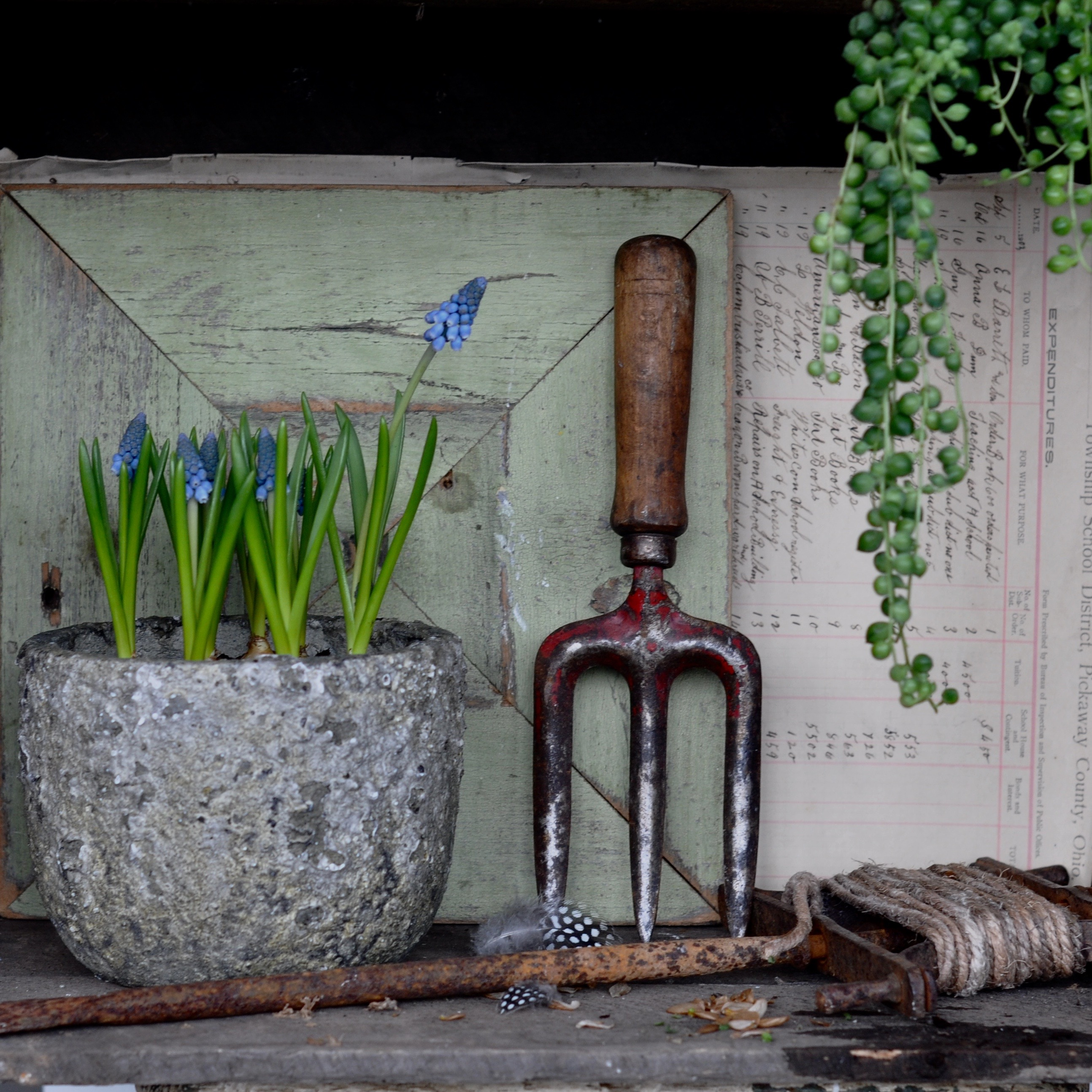 Homebarn plant pots and vintage garden styling