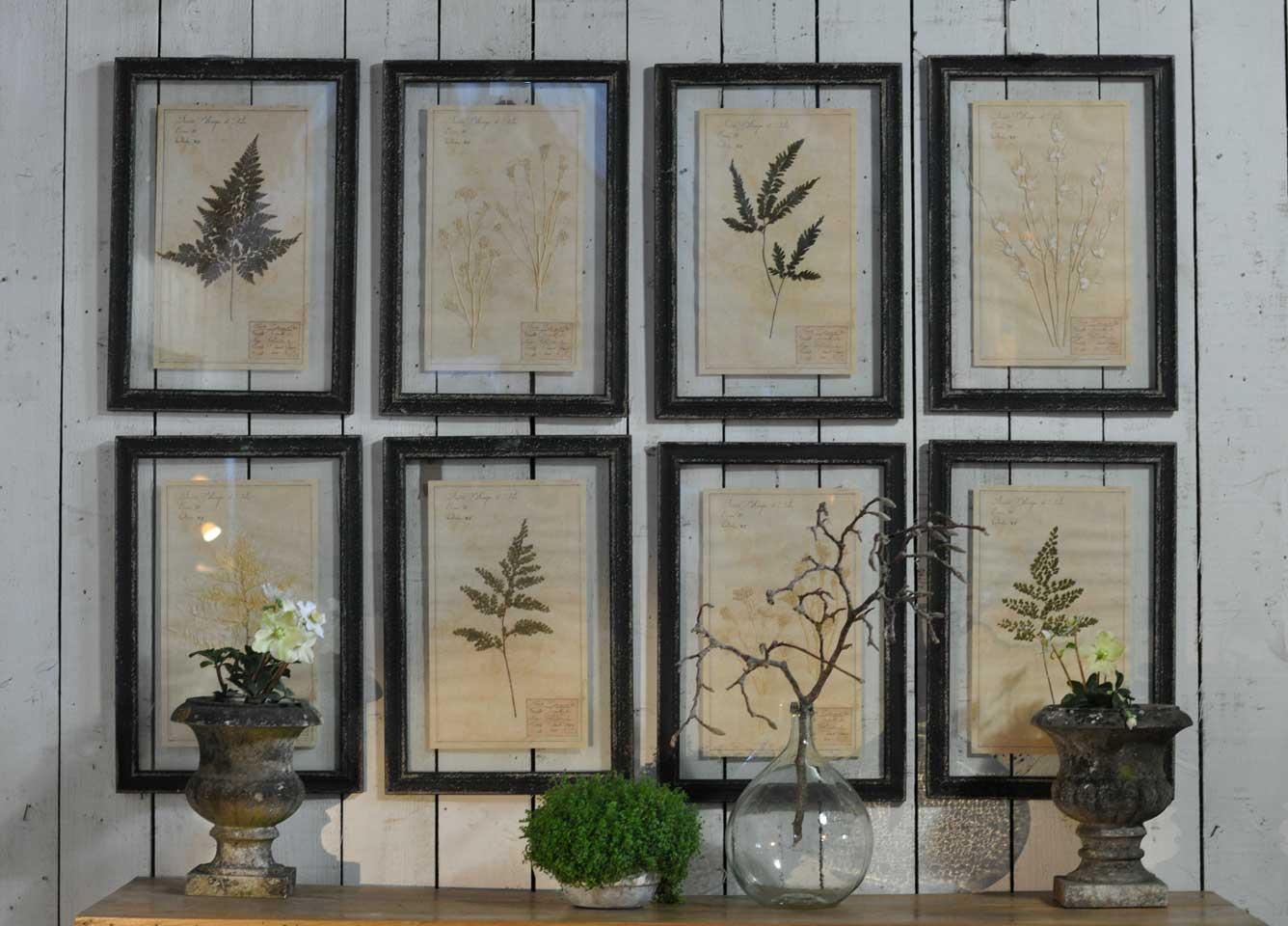 Framed Pressed Botanical Artwork - Home Barn Vintage