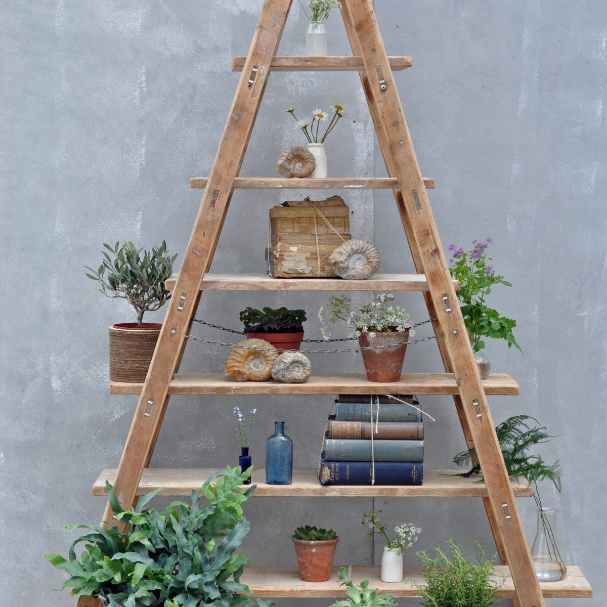 Vintage Reclaimed Ladder Shelves Rustic Shelving