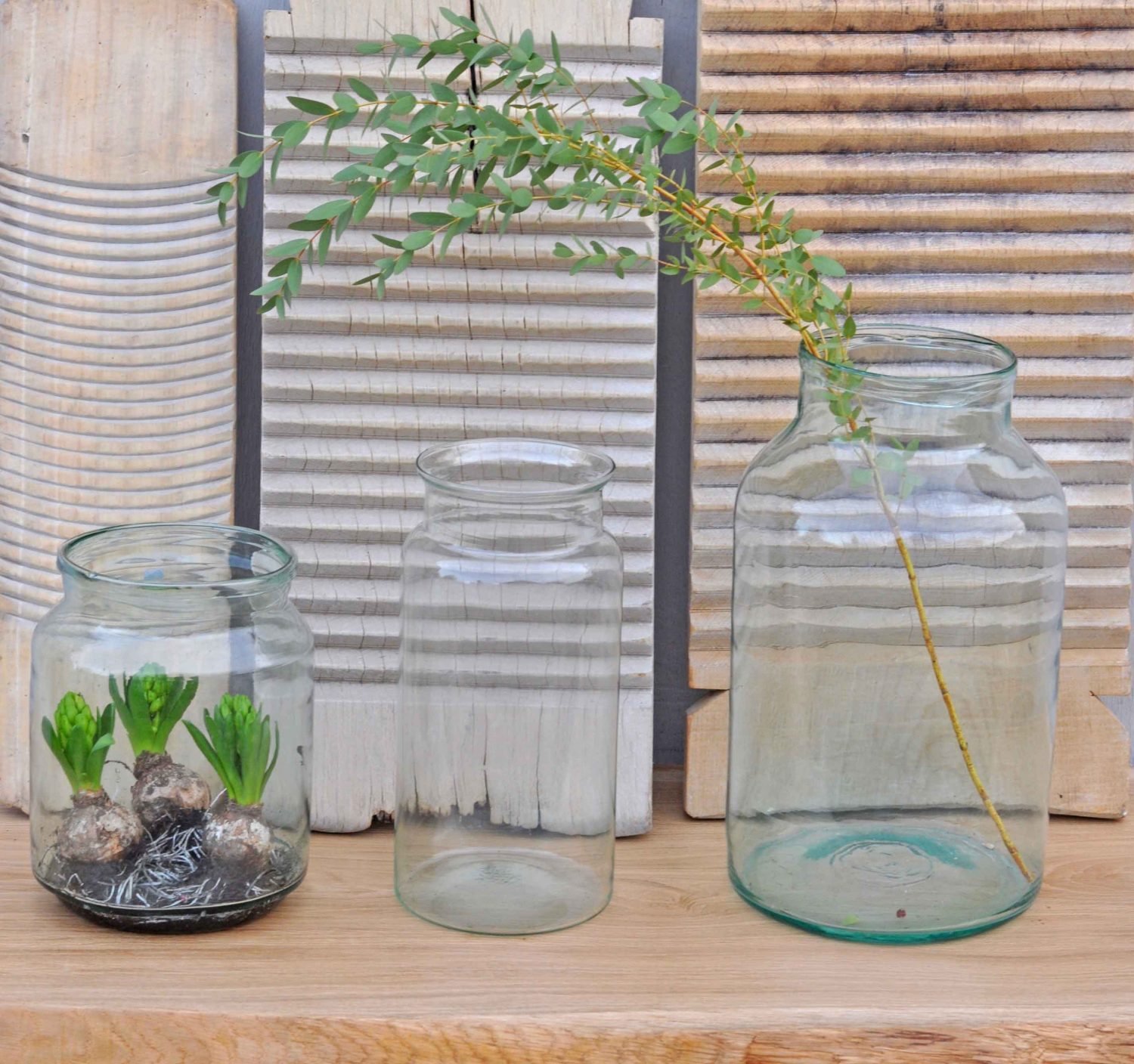 Glass Bell Jars In A Choice of Three Individual Sizes