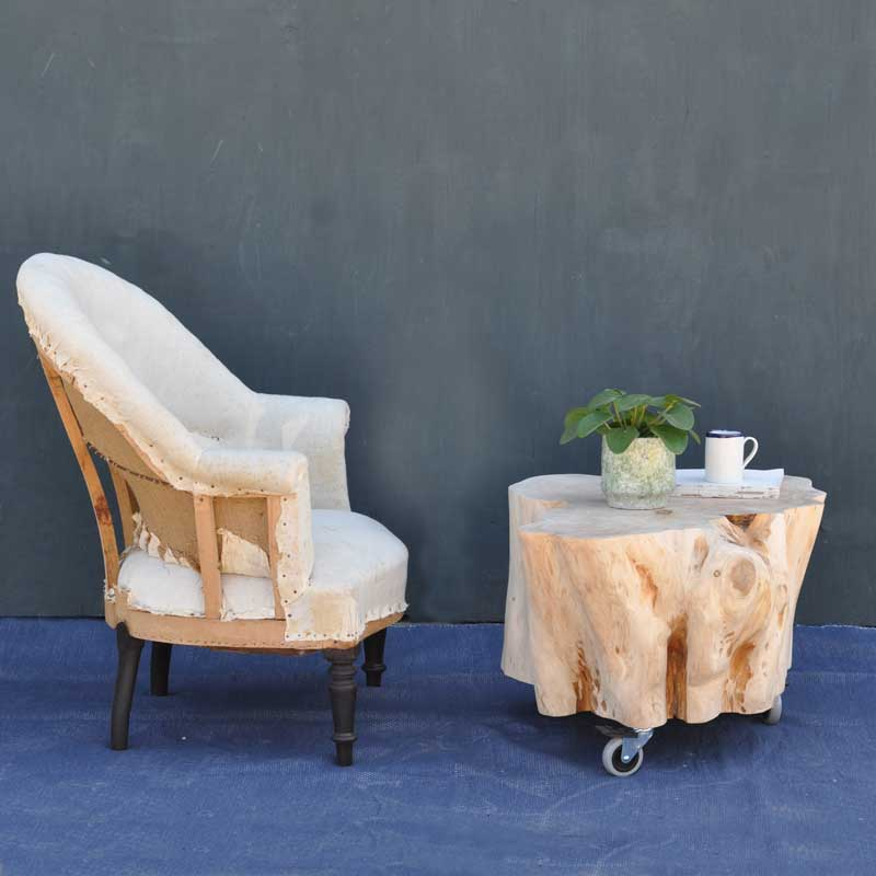 Tree Trunk Coffee Table On Wheels In Bleached Natural Timber