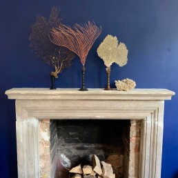 large Docoative antique sea fan on stand from Home Barn on a mantlepiece