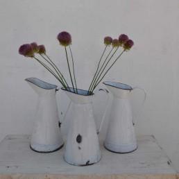 vintage white enamel tin jug