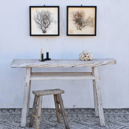Framed vintage sea fan artwork hangs above a rustic wooden bench and stool from Home Barn