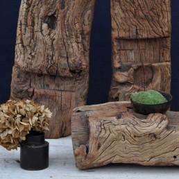 architectural antique elm sculpture