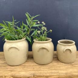 vintage French confit preserve pots   lug handle