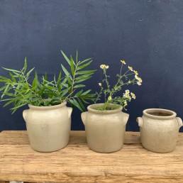 vintage French confit preserve pots | lug handle