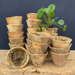 Vintage Terracotta Resin Collection Pots