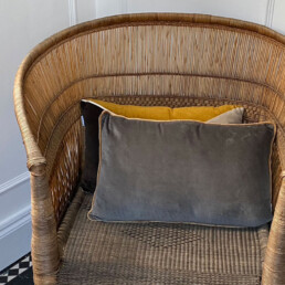 Grey Velvet cushion | contrast piping