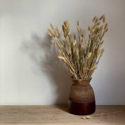 Dried Flower Bunny Tails