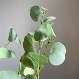 Faux Eucalyptus Two Stems