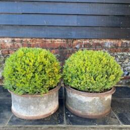 Pair of Antique Planters Galvanised & Cast Iron