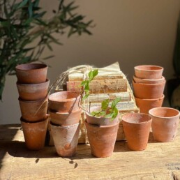 Terracotta Hand Thrown Vintage Pots   Small