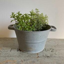 Galvanised Low Vintage Planter Medium