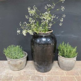 Antique Chinese Preserve Pot | Extra Large | Eros