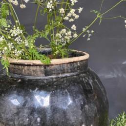 Antique Chinese Preserve Pot   Extra Large   Eros