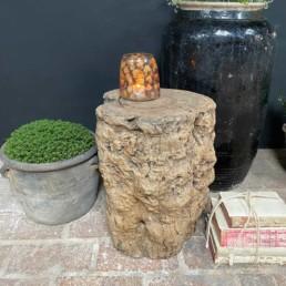 Rustic Elm Tree Trunk Side Table | Maximus