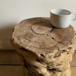 Rustic Elm Tree Trunk Side table | Milo