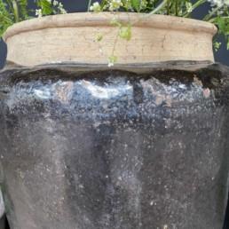 Antique Chinese Preserve Pot | Extra Large | Zeus