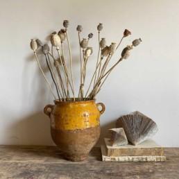 Small Antique French Confit pot | Bella