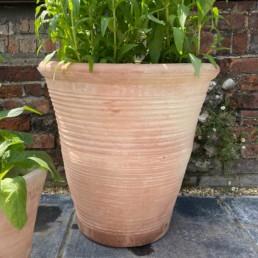 Tuscan XL Terracotta Garden pot | Riged