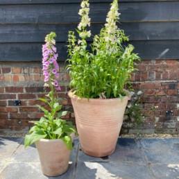 Tuscan-XL-Terracotta-Garden-pot-Riged