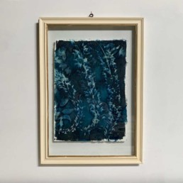 FRAMED CYANOPRINTS | BOTANICAL ARTWORK No: 3