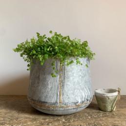 Medium Tin Planter | Gold Stripe