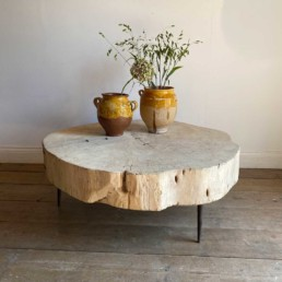 Tree Trunk Coffee Table | Verity