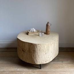 Tree Trunk Coffee table | Vivien