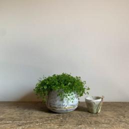 Extra Small Tin Planter | Gold Stripe